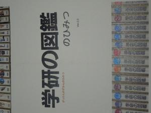 Dscn2564